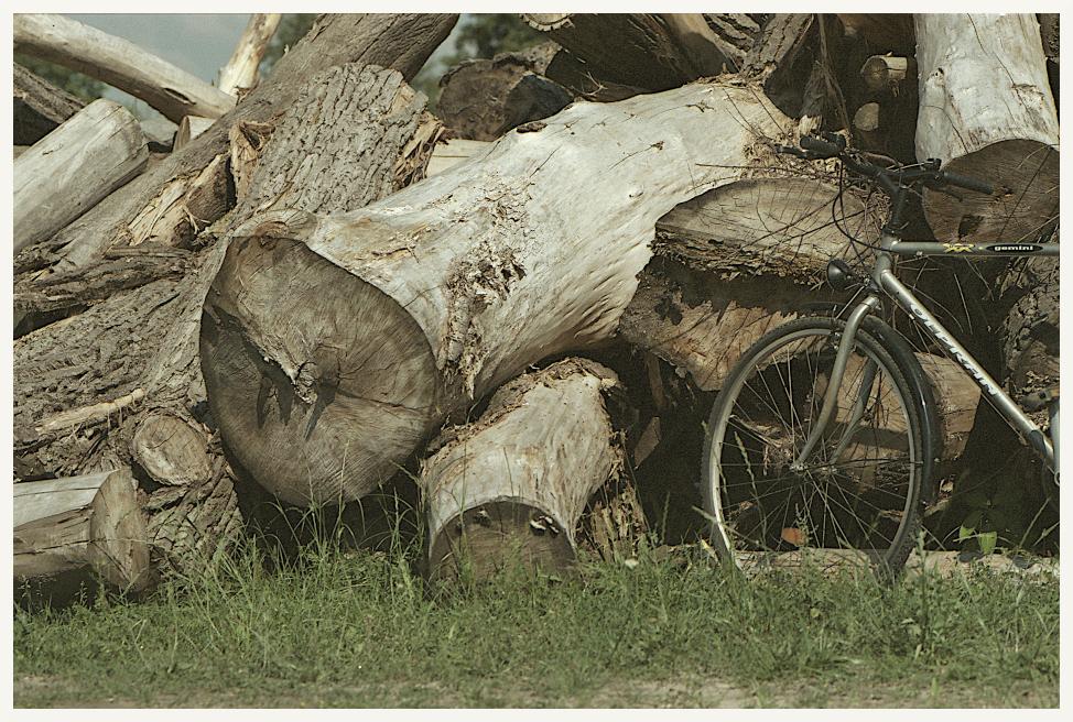 okołodomowo rowerowo